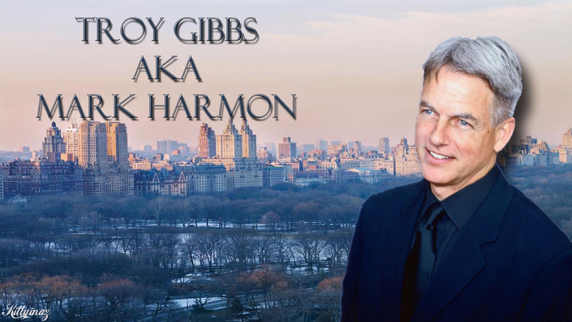 Troy Gibbs