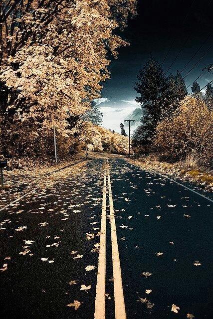 Road at twilight