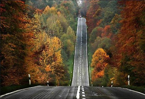 beautiful-road