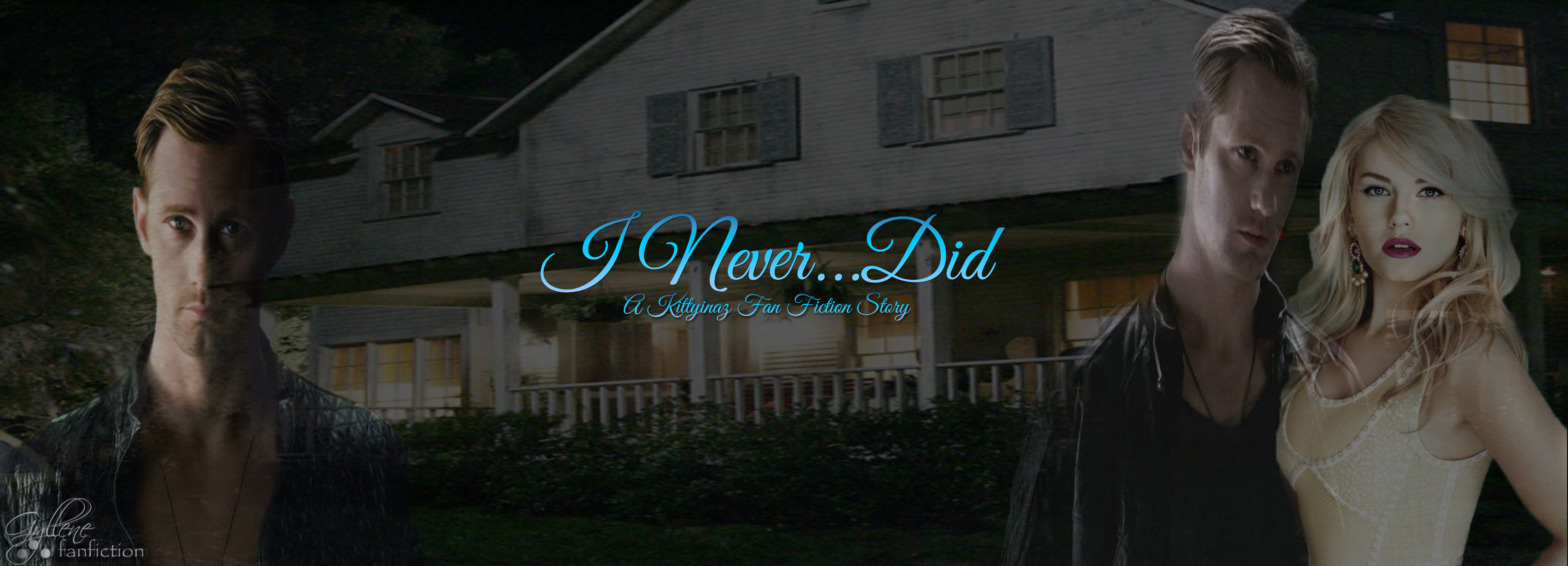 I Never Did Banner2